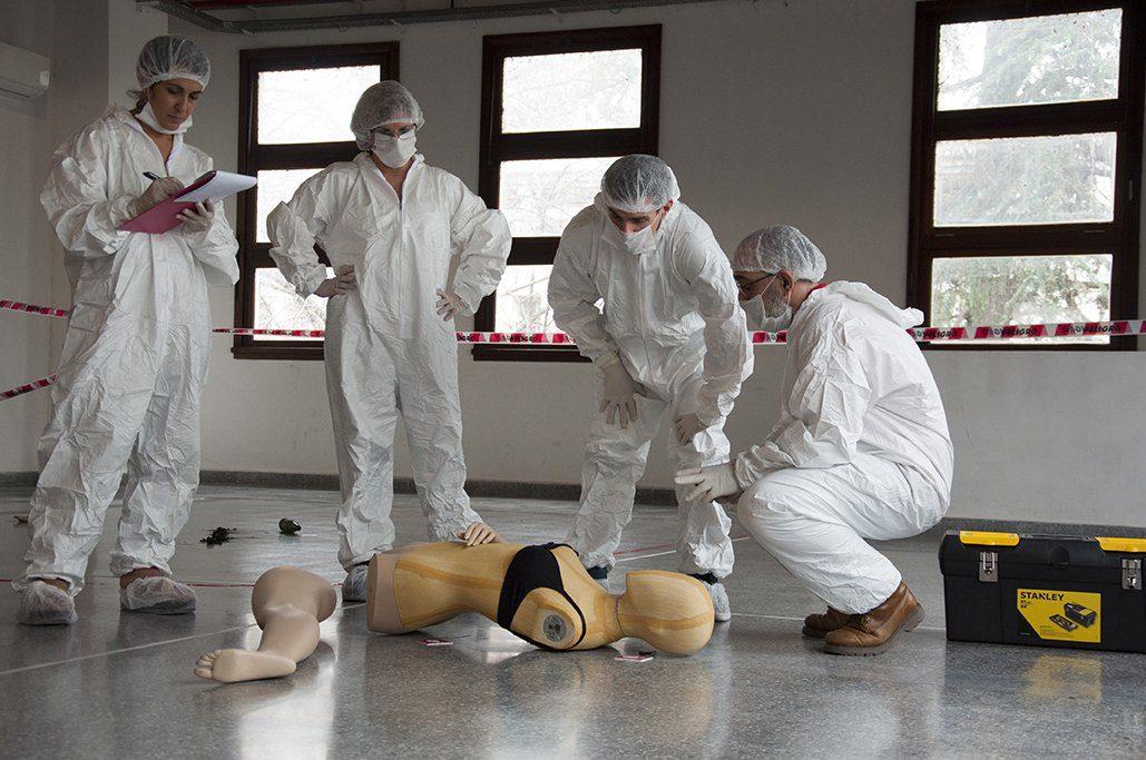 ¿Qué son los peritos forenses?